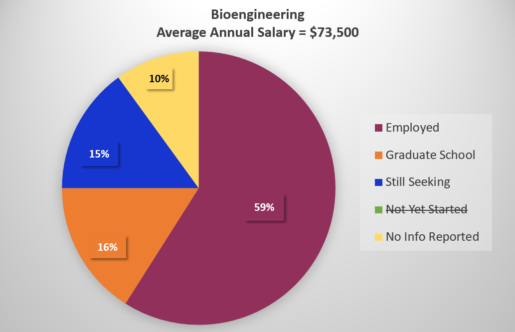 Pie Chart of Bioengineering 2020 Employment Rate