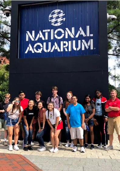 Clark Scholars Summer Program Aquarium visit